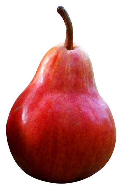 Red Pear PNG image - PngPix