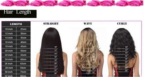 Hair Length and Hairline|Online Shopping For Human Hair