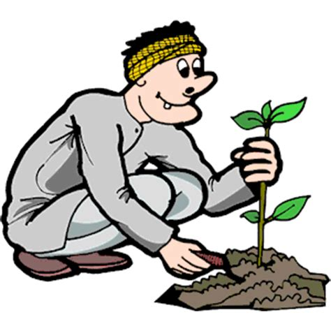 Plant tree clipart 20 free Cliparts   Download images on